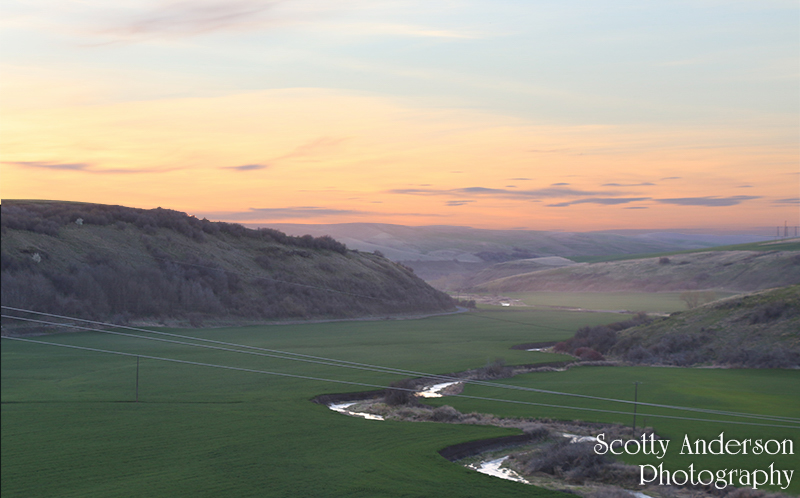 Snake River Canyons and the Palouse Hills